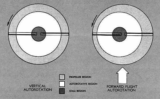 autorotation and spin